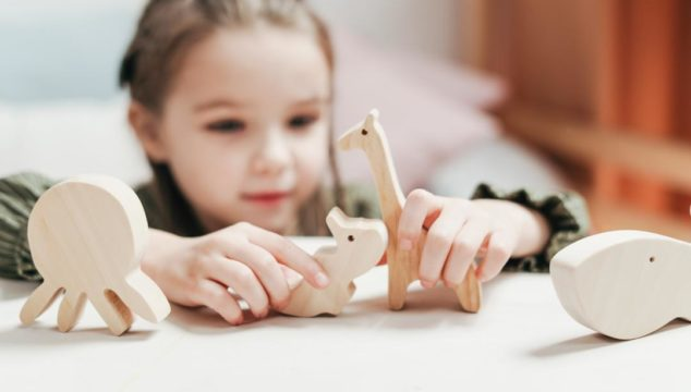 Essential Toys for preschoolers