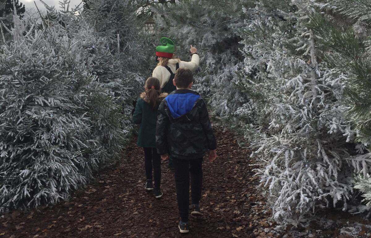 Walking through the snowy trees at Chessington to see Santa