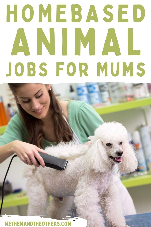Home based animal jobs