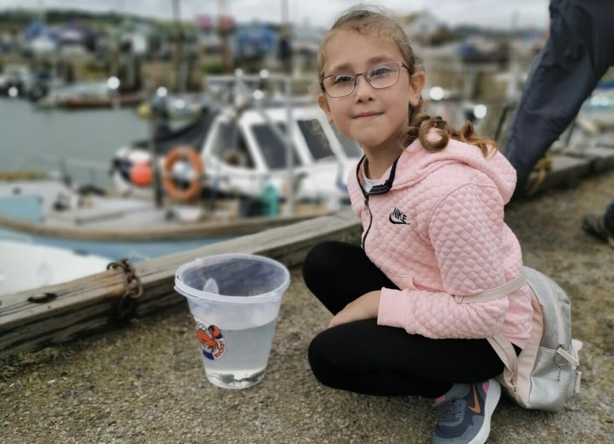 Catching Crabs at West Bay Dorset